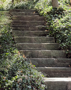 The stairway leading up to the Rose Garden