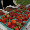 May 19, 2016 Rock Hill, South Carolina- Folks in Old Town Rock Hill didn't let a little rain stop them from purchasing fresh produce, fantastic food and beautiful handmade items during the first Farmer's Market of the season. Lots of smiles and puppy kisses were on hand as well.
