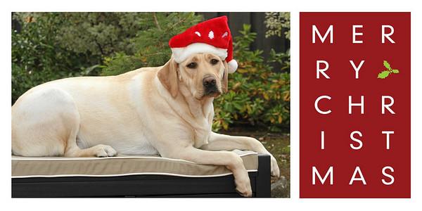 Holiday Photo Card 4x8-002