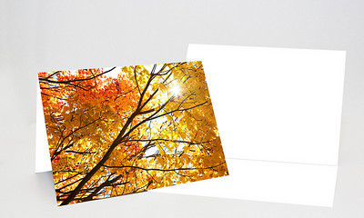 5x7 Folded Holiday Card-001 1 Full Bleed Cover Photo / Blank Inside