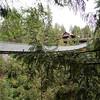 Kiapalano Suspension Bridge
