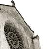 Alhambra bird perch