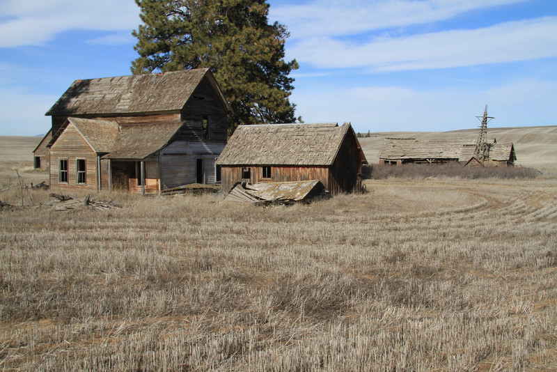 Weathered farm house and windmill tower.