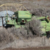 John Deere combine over grown by sagebrush