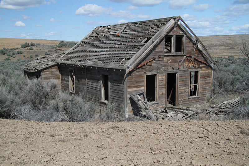 lonely remains of a old farm house