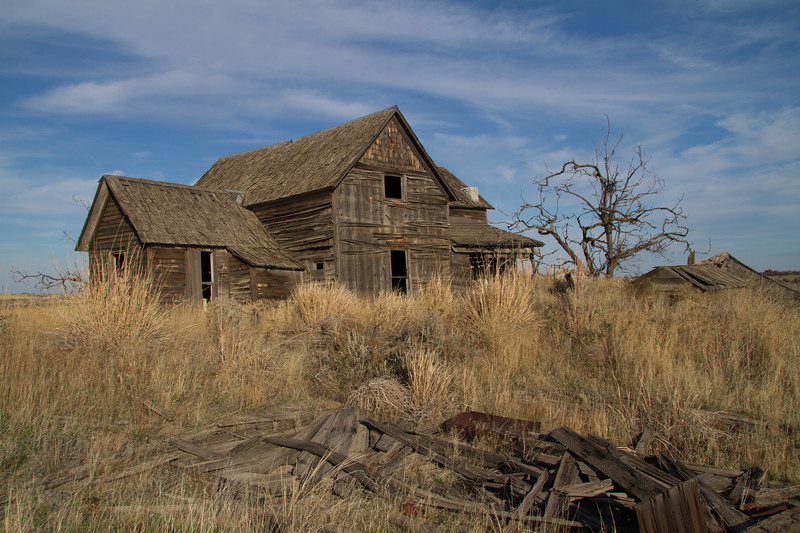 Weathered farmhouse and dead tree.