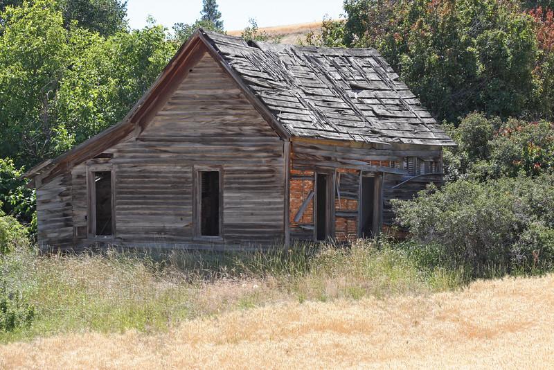 Weathered farm house near golden wheat field.