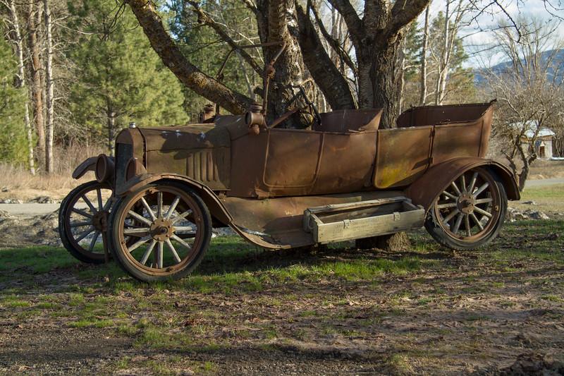 Unique antique car in a tree.