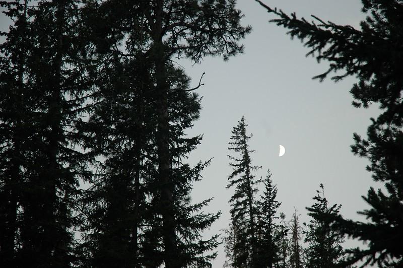 Night 1 in Custer.