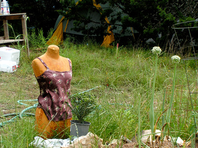 Mannequin in the grass in Kerrville, Texas