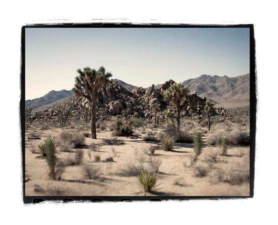 Southern California 13