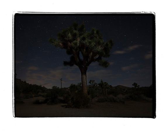 Southern California 11
