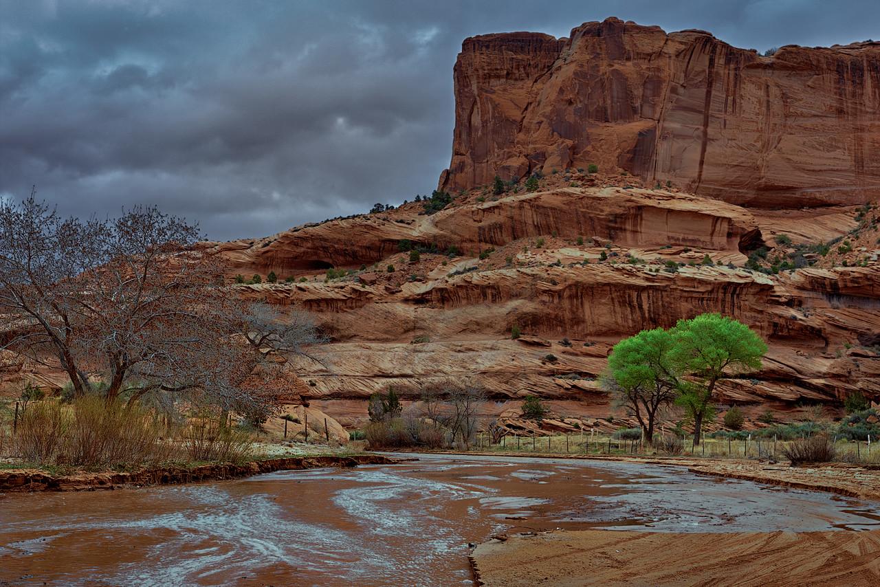 Green Trees - Canyon de Chelly
