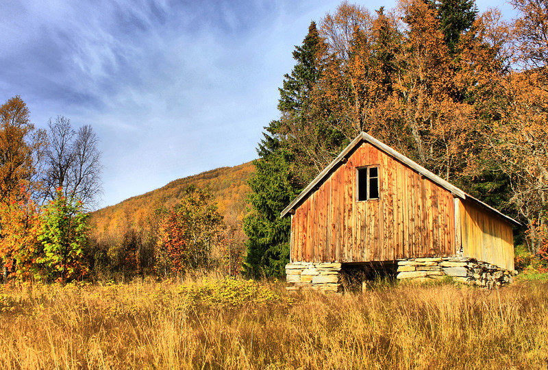 Old barn in autumn colors