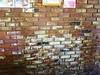 Love the bricks