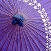 Purple Takayama Umbrealla