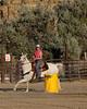 BIL Saddle Club-3