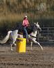 BIL Saddle Club-1