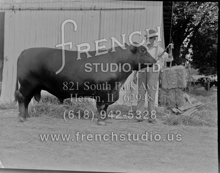 03_Animals&Farmers_012012