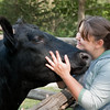 A bull gets a loving hug from an interpreter at the Finnish Ketola farm.