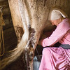 Milking time at the Ketola dairy farm..