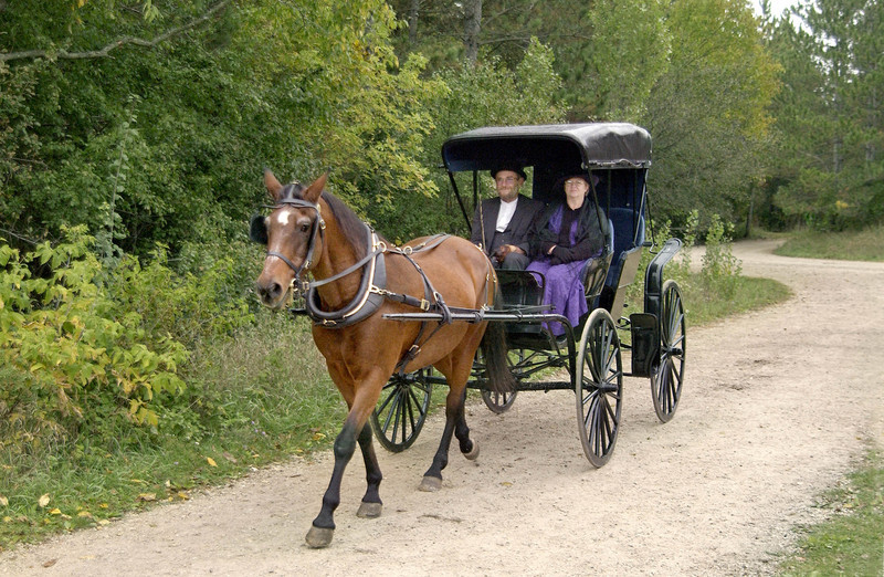 A horse and buggy ply the roads near the Koepsel farm at Autumn on the Farms special event.