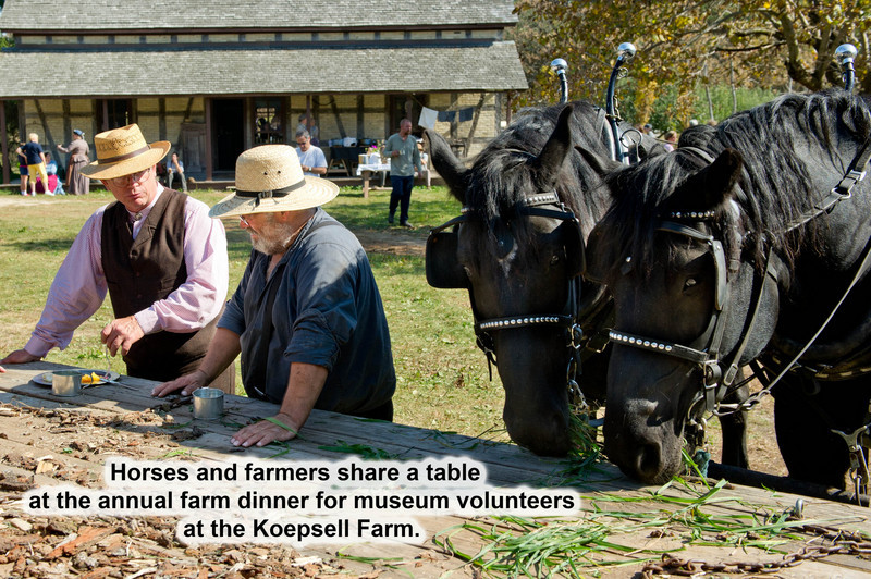 "Draft horses and their owners share a ""table"" at the farm dinner for volunteers during the annual  Autumn on the Farms special event in October."