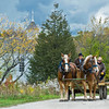 A team of horses with a wagon full of logs pauses in Crossroads Village on the way to the portable saw mill set up in the German area for Autumn on the Farms. a special event held each October.