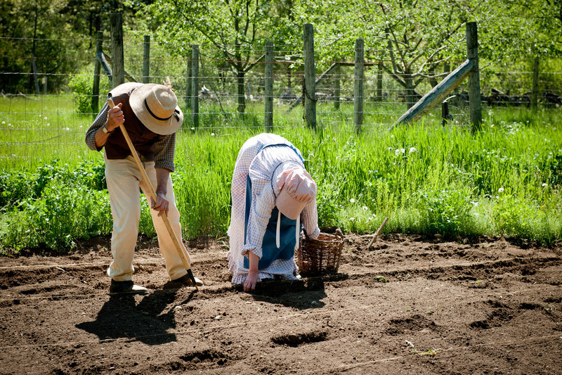Spring planting at the Ketola Garden.
