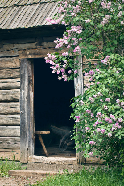 Toolshed at the Ketola (Finnish) farm.