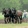 Members of the Jefferson County Draft Horse Association prepare the fields during the annual Spring Rituals event at Old World Wisconsin.