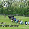 Schoolchildren follow Teddy and Bear, Old World oxen, through the pasture at the 1875 Schottler farm.