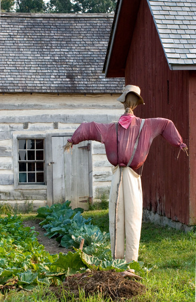 A scarecrow guards the garden at the 1875 Schottler (German) farm.