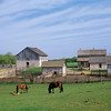Overview of the 1875 Schottler farm.  Those are piglets frolicing around the horses in the foreground.