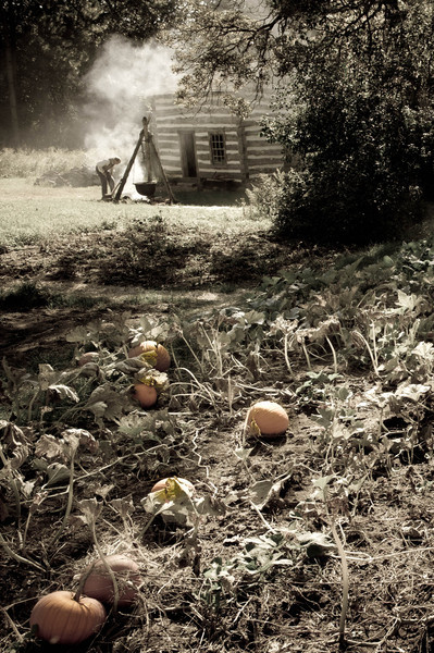 Pumpkin patch and cabin at the 1845 Fossebrekke farm.