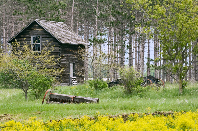 The Breen site contains buildings and farm equipment left behind when the Breen family decided to return to Norway and abandon their home in the New World.