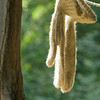Knit mittens are hung up to dry at the 1865 Kvaale sheep farm.