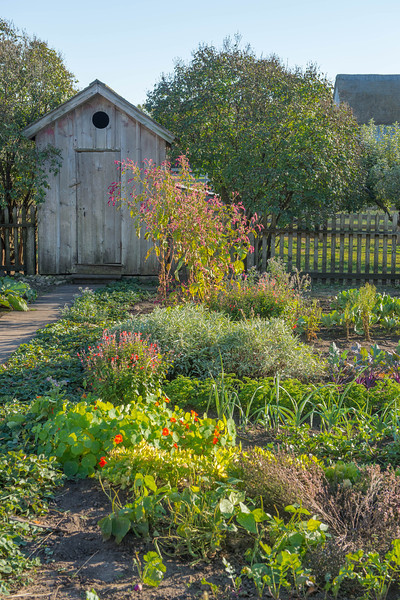 Garden path to the outhouse at the Koepsell farm.