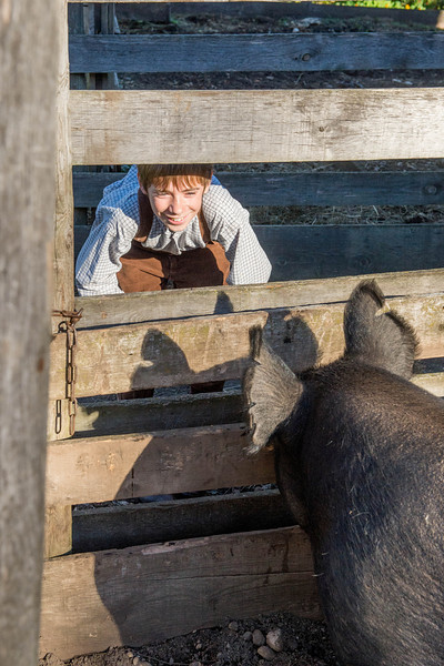 A young boy befriends the farm animals.