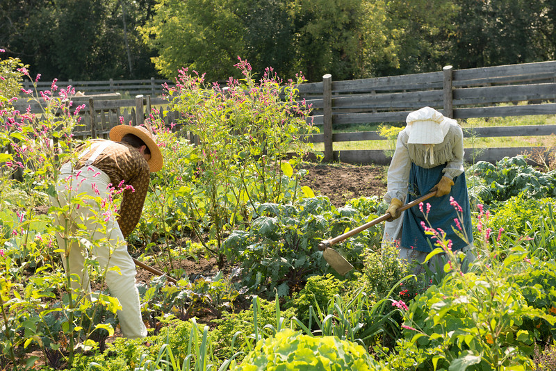 Gardeners working in the Kvaale garden.