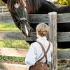 A young boy befriends a horse.