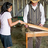 A student visitor prepares flax fiber for spinning in the Shultz barn in the German area.