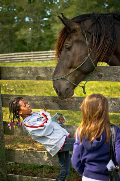 Two young visitors are overwhelmed by Sam the horse as he looks for a handout of grass.