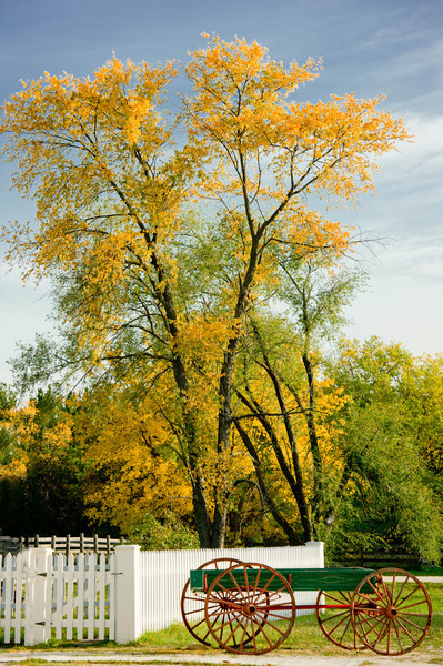 Autumn colors in Crossroads Village
