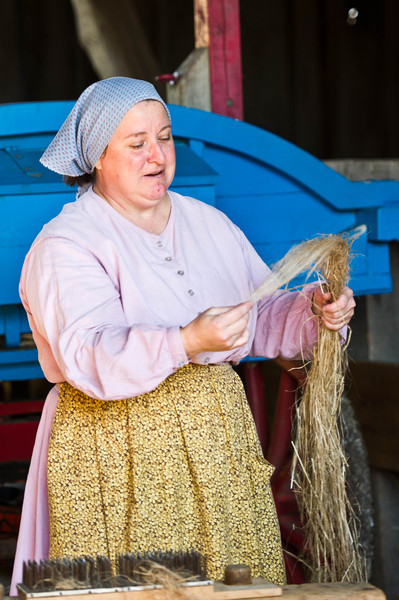 An interpreter cleaning flax fiber in the Grube barn at the Schulz farm in the German area