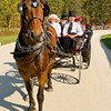 Visitors explore Old World Wisconsin with their horse and buggy