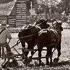Plowing a field on the 1875 Schottler farm during the Autumn on the Farms special event held each October.