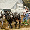 Preparing a field on the 1875 Schottler farm during Autumn on the Farms special event held each October.