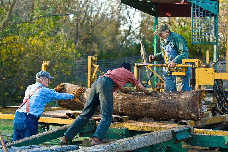 Loading a log onto the portable steam driven sawmill set up each year near the Koepsell farm in the German area during the Autumn on the Farms special event in October.