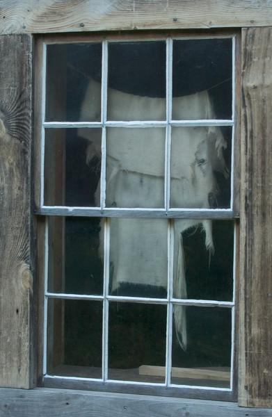 Looking in a Fossebrekke cabin window.